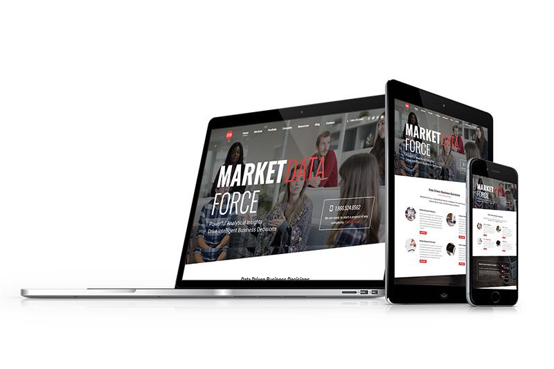 marketdataforce, optimizedwebmedia, client mockup ,screenshot