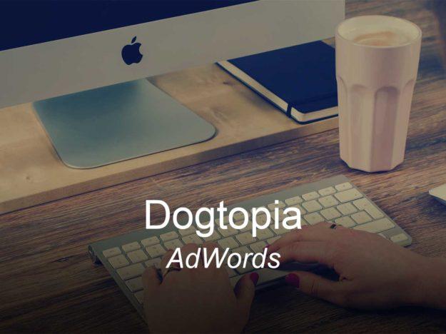 dogtopia, optimizedwebmedia, clients, adwords ppc