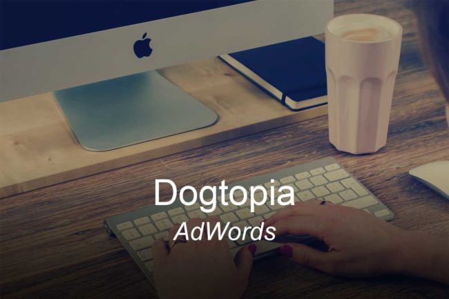 dogtopia-optimizedwebmedia-clients-adwords-ppc