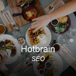 hotbrain, optimizedwebmedia, clients, seo, digital marketing